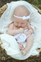Online Collection - Vivienne Newborn